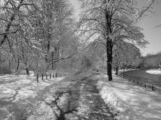 winter-652715_1920