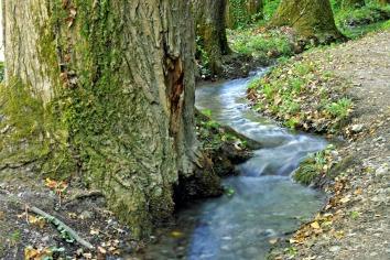 stream-2598633_1920.jpg